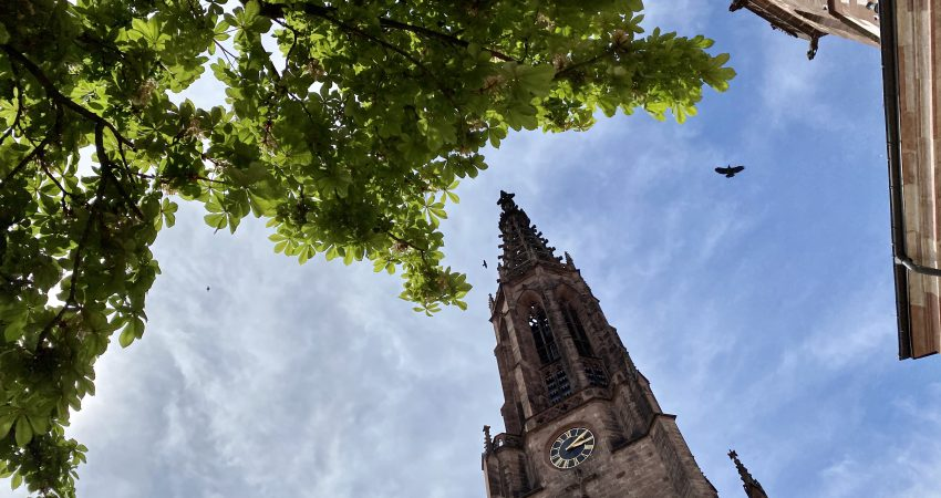 Die Stadtpfarrkirche Bühl beheimatet die Schwarzorgel