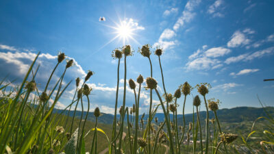 Symbolbild für den Weg ins Solarzeitalter